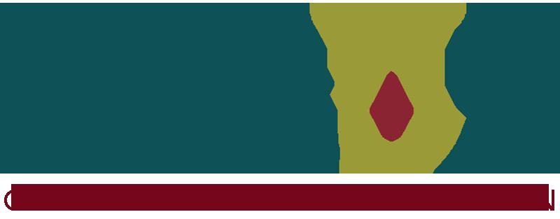 Logo Arguz Digitalización